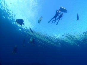 青の洞窟 ロングコース