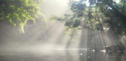 釣り(川・湖)