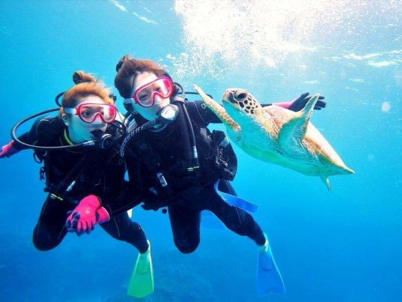 慶良間諸島 体験ダイビング