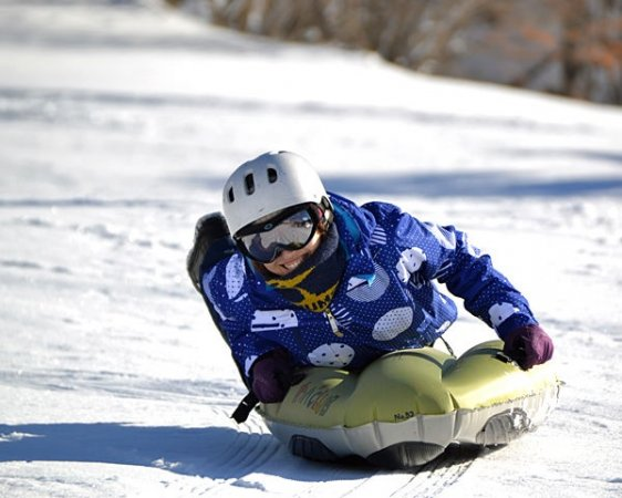 視線が雪面すれすれなのでスピード感・迫力満点! スキーやスノーボードより手軽に楽しめるのも魅力!