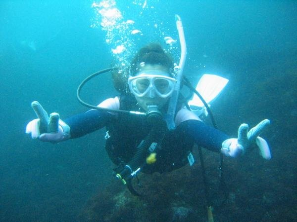 ただ潜るだけじゃない!『体験ダイビング』で、伊豆の海の魅力を十分に体感いただけます。