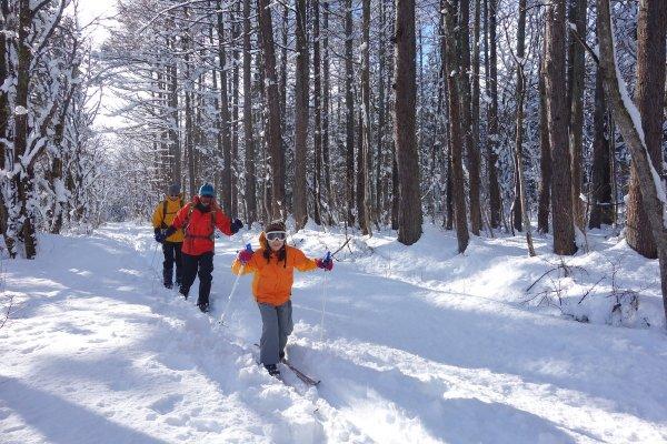黒姫 歩くスキー