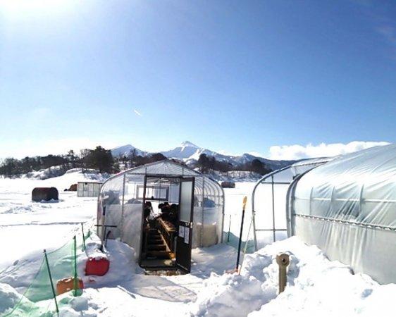結氷後(1月中旬〜3月上旬ごろ)は冬の風物詩『氷上釣り』になります。釣り小屋/ドーム船があるから初心者も安心!
