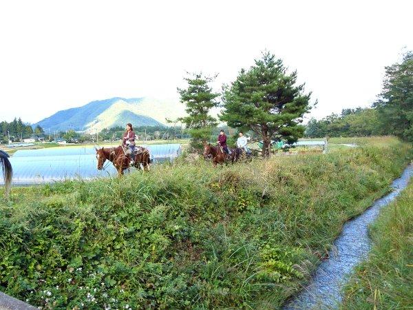 《騎乗1時間》林間ホーストレッキングコース