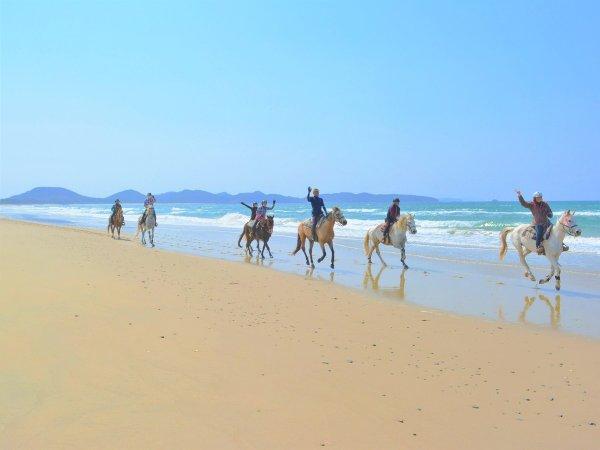 四季を通じて楽しめる玄界灘の海岸線。日によって、時間によって移り変わる景色が楽しめます。