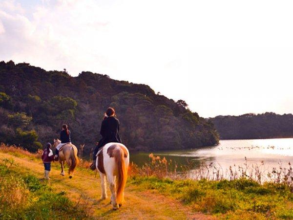 玄界灘・宗像 ホーストレッキング(乗馬)