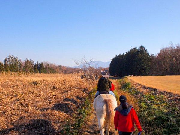 桜川・ホーストレッキング(乗馬)