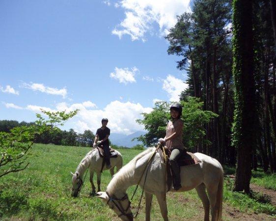 外乗経験豊かで、おとなしい馬たちがお待ちしています!!