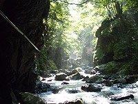 芦生・比良山系 トレッキング