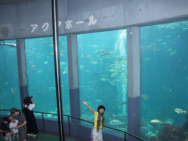 人気の下田海中水族館も、ツアー前後に楽しめる!