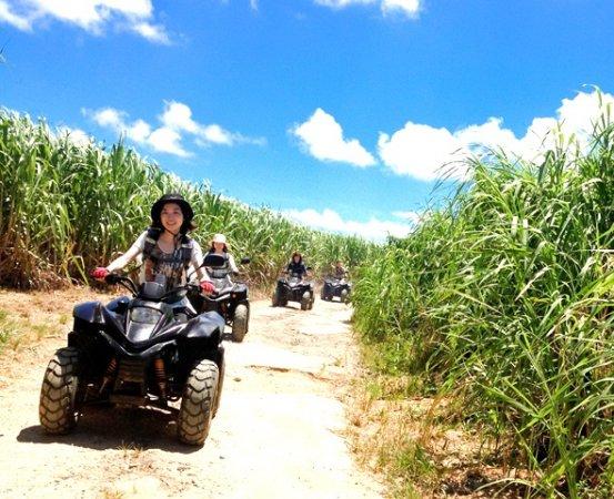 石垣島の亜熱帯ジャングルやさとうきび畑をバギーで駆け巡る冒険ツアー!