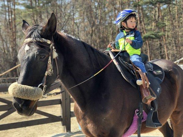 キッズ体験乗馬 コース