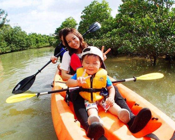 熱帯ジャングルマングローブのカヤック探検