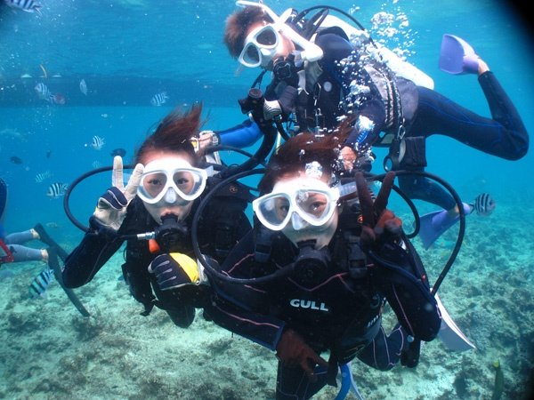 沖縄本島ブセナ 体験ダイビング&シュノーケリング