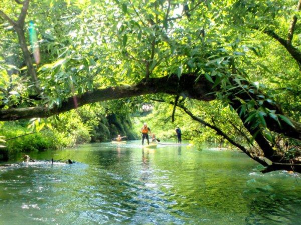 緑豊かな支流へ探検気分でクルージング