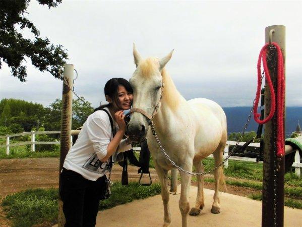 ツアー後には馬とのふれあいも
