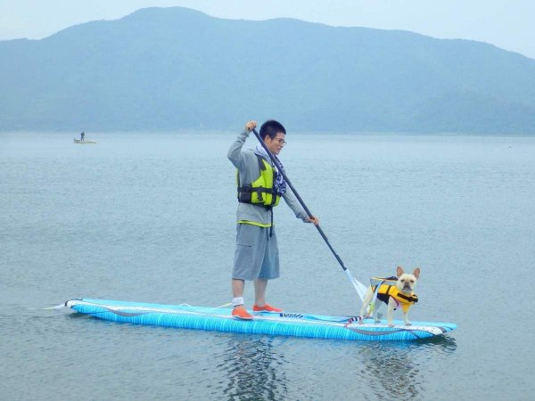 中型までの愛犬なら、同伴も無料!綺麗な景色でみんな大興奮!?  ※愛犬用ライフジャケットはご自身でご用意ください。
