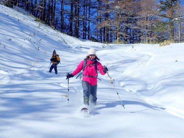 新雪パウダースノーを満喫!斜面を勢いよく駆け下りてみよう!