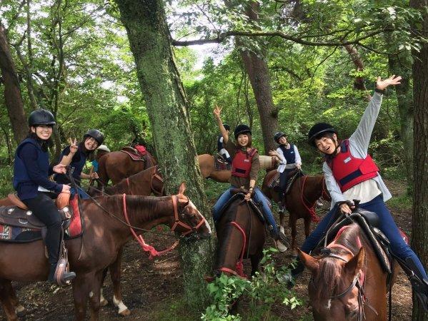 森の中を馬と一緒に散策!