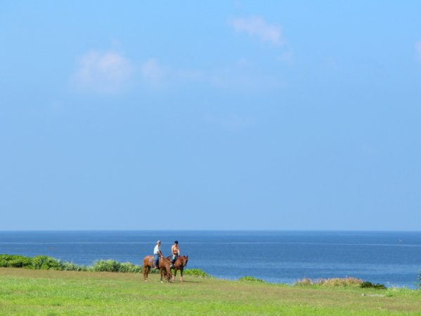 沖縄本島(読谷村) ホーストレッキング(乗馬)