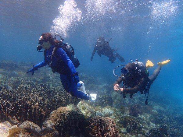 海中での浮遊感、自由に泳ぐ楽しさ体験しよう♪
