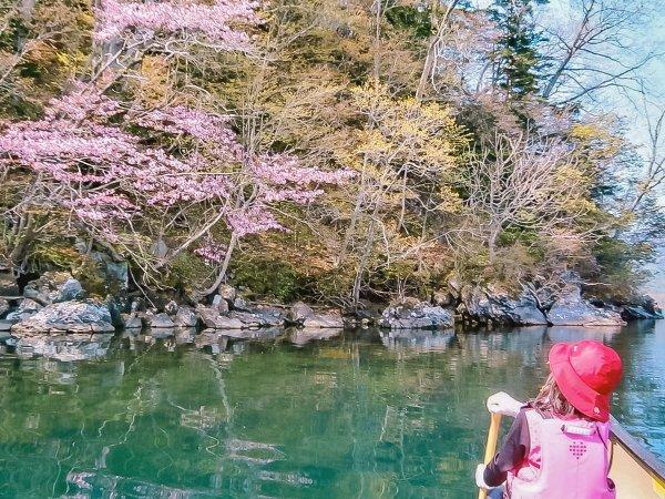 釧路川 カヌー
