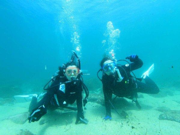 屋久島 体験ダイビング