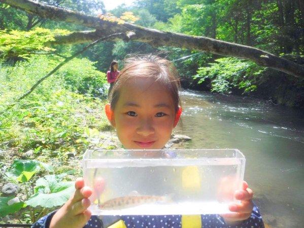 奥入瀬 釣り(川)