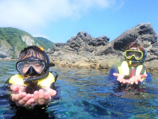 ウニなやヒトデなど、海で暮らす生き物たちに出会えます。