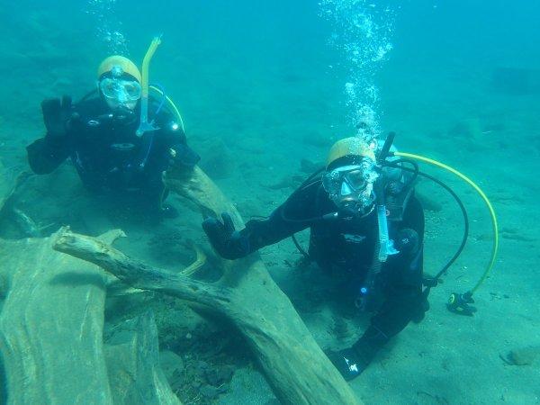 個性的な形の流木が沈む湖底