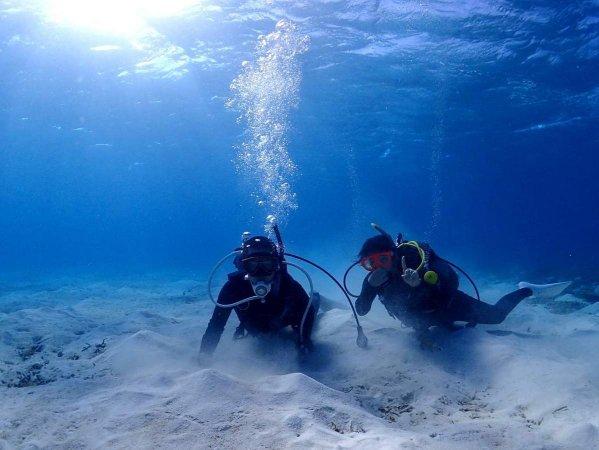 その日の海況やリクエストに応じてベストなダイビングポイントを選択いたします!
