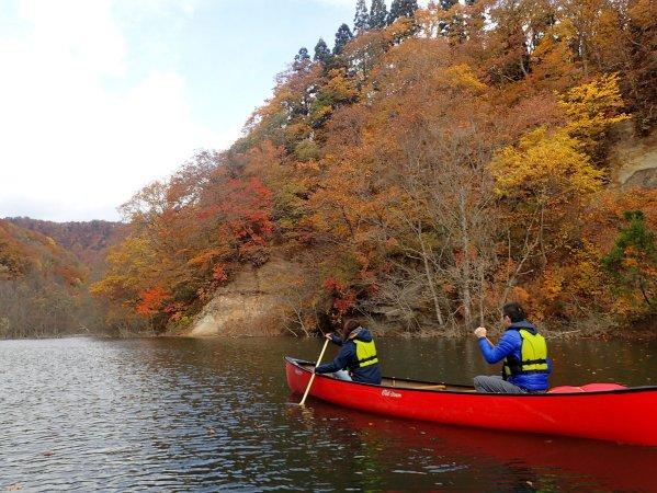 秋にはこんなに綺麗な紅葉が!
