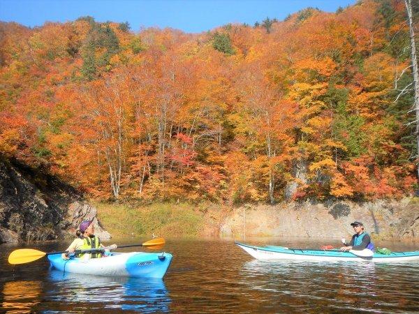 赤、黄、橙色・・・。秋のお楽しみは色とりどりの紅葉。