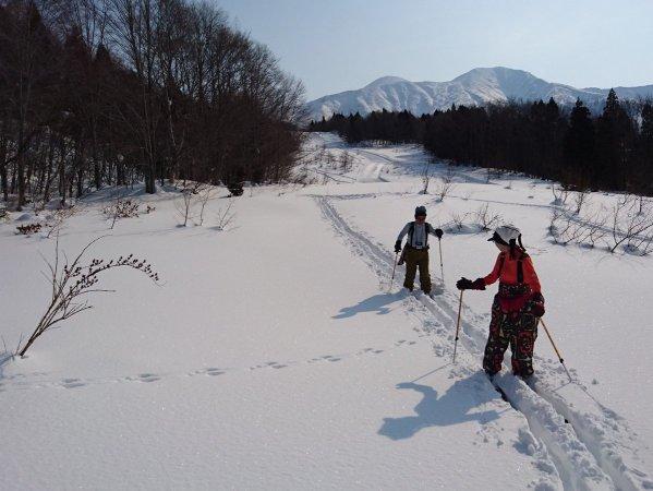 雪面に残された動物の足跡