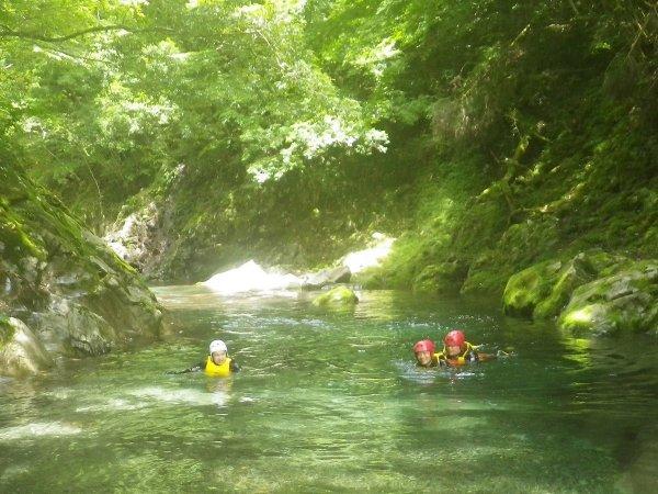 緑が深い天然プール