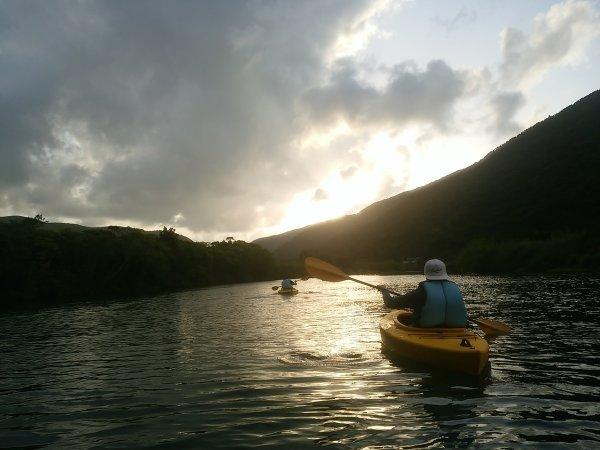奄美大島 マングローブカヌー