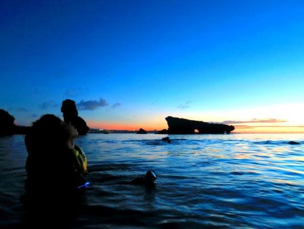 水中でキラキラ光る夜光虫を見れるコースあり