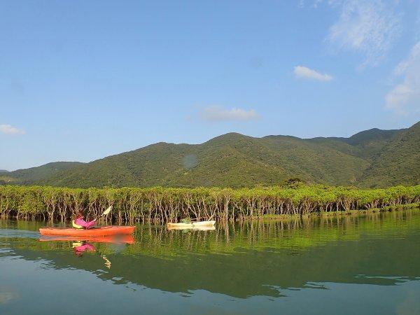 奄美大島 カヌー