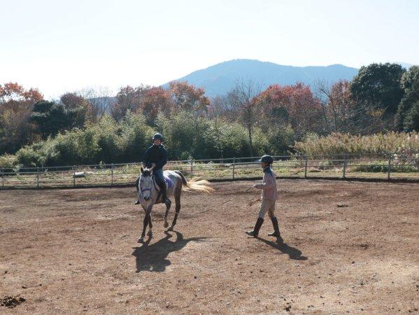 馬場内レッスンつきコースでは熱心に指導してくれます