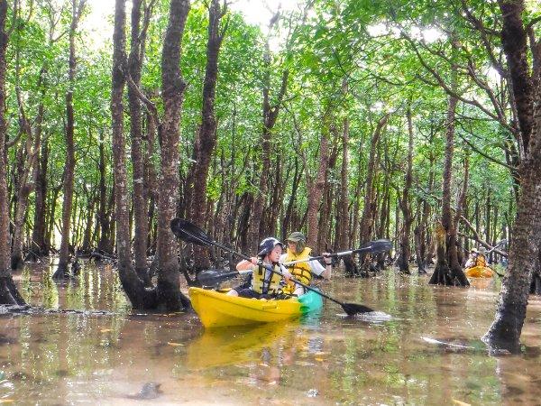 カヌー&ジャングル探検