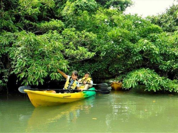 ガイドと一緒に、不思議な魅力たっぷりの宮良川を探検しよう!