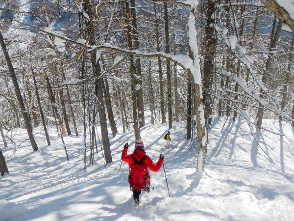 ふかふかの雪の斜面を駆け下りて気分爽快!