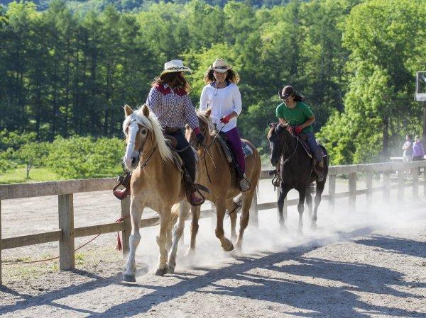 50分以上から馬場での速歩が体験できる!