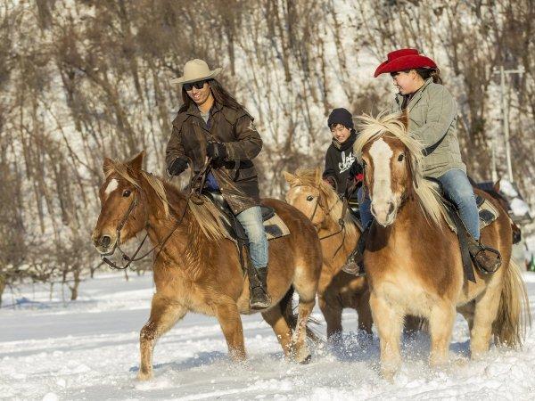 1年を通して乗馬が楽しめる!