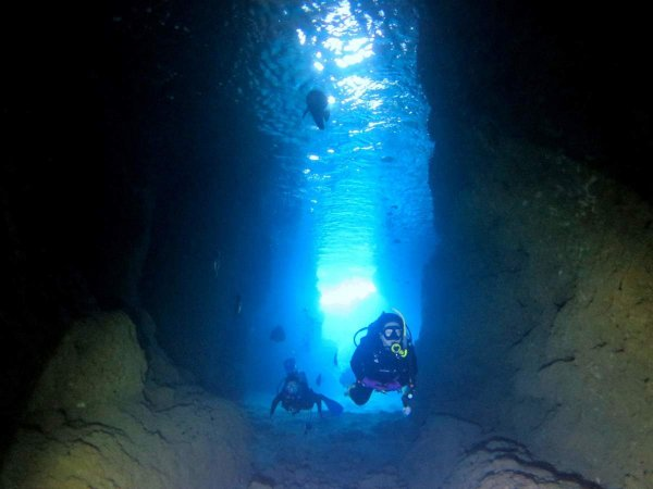 神秘的な青の洞窟を探検!「青の洞窟コース」
