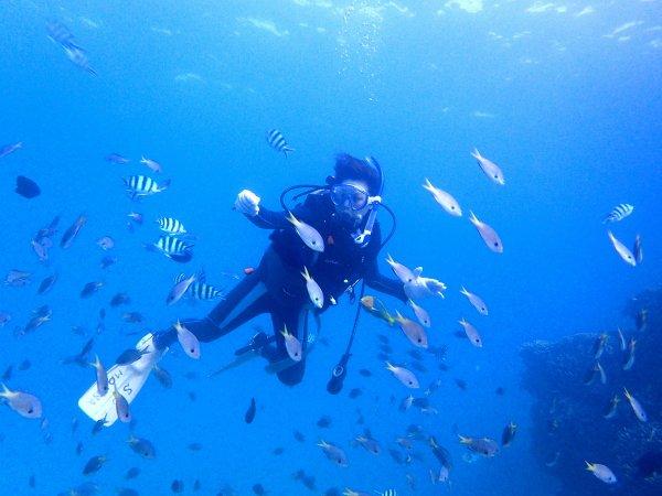 魚にかこまれながらゆったりダイビング