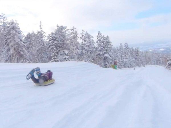 パウダースノーが巻き上がる!開放的な斜面を滑走して気分爽快!