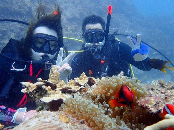 憧れの石垣島の海でダイビングを満喫!