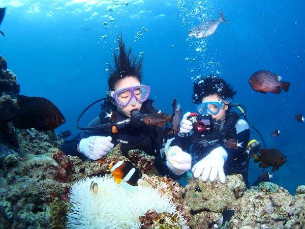 熱帯魚の数も種類も豊富な真栄田エリア