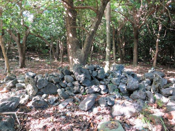 【幻の廃村ツアー】自然と歴史を巡るちょっと大人のプログラム